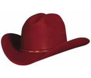 Bullhide Buddy Youth Cowboy Hat